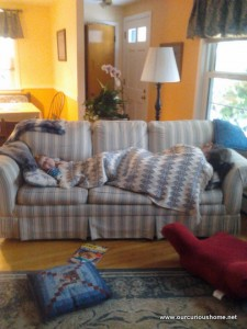 two people nappingon the couch at Mom's HOuse