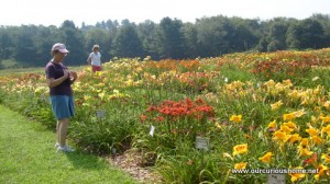 My Mom at Tranquil Lake among the day lilies