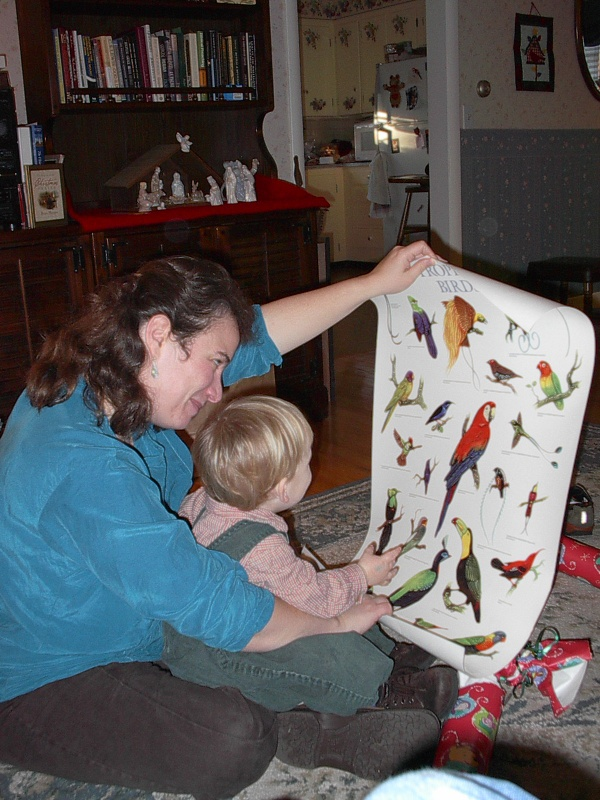 "Christine with M on her lap showing him his new poster of tropical birds.  ""Bud!"" was his first word."