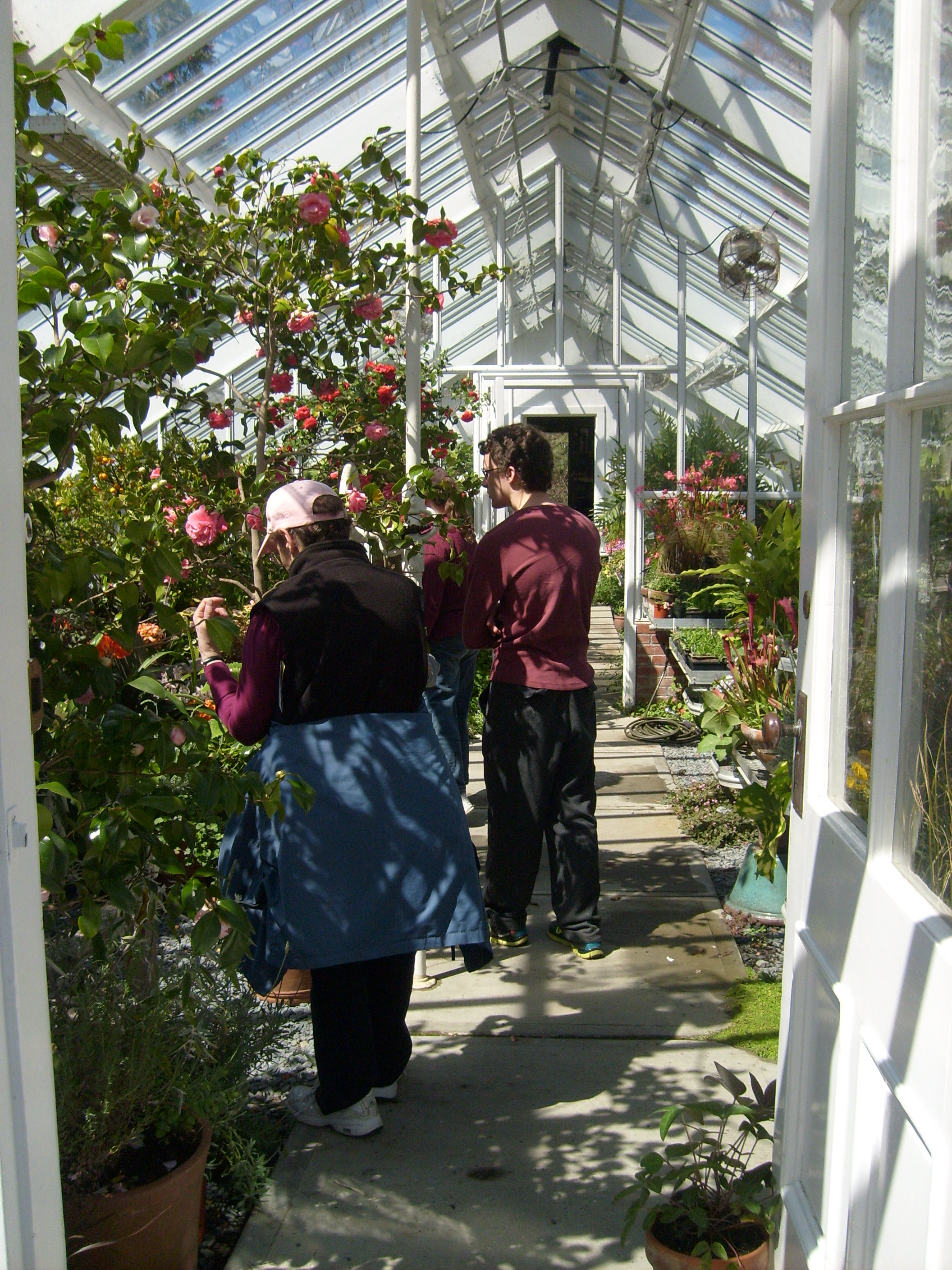 Mom and Ben in the greenhouse at Blythwold