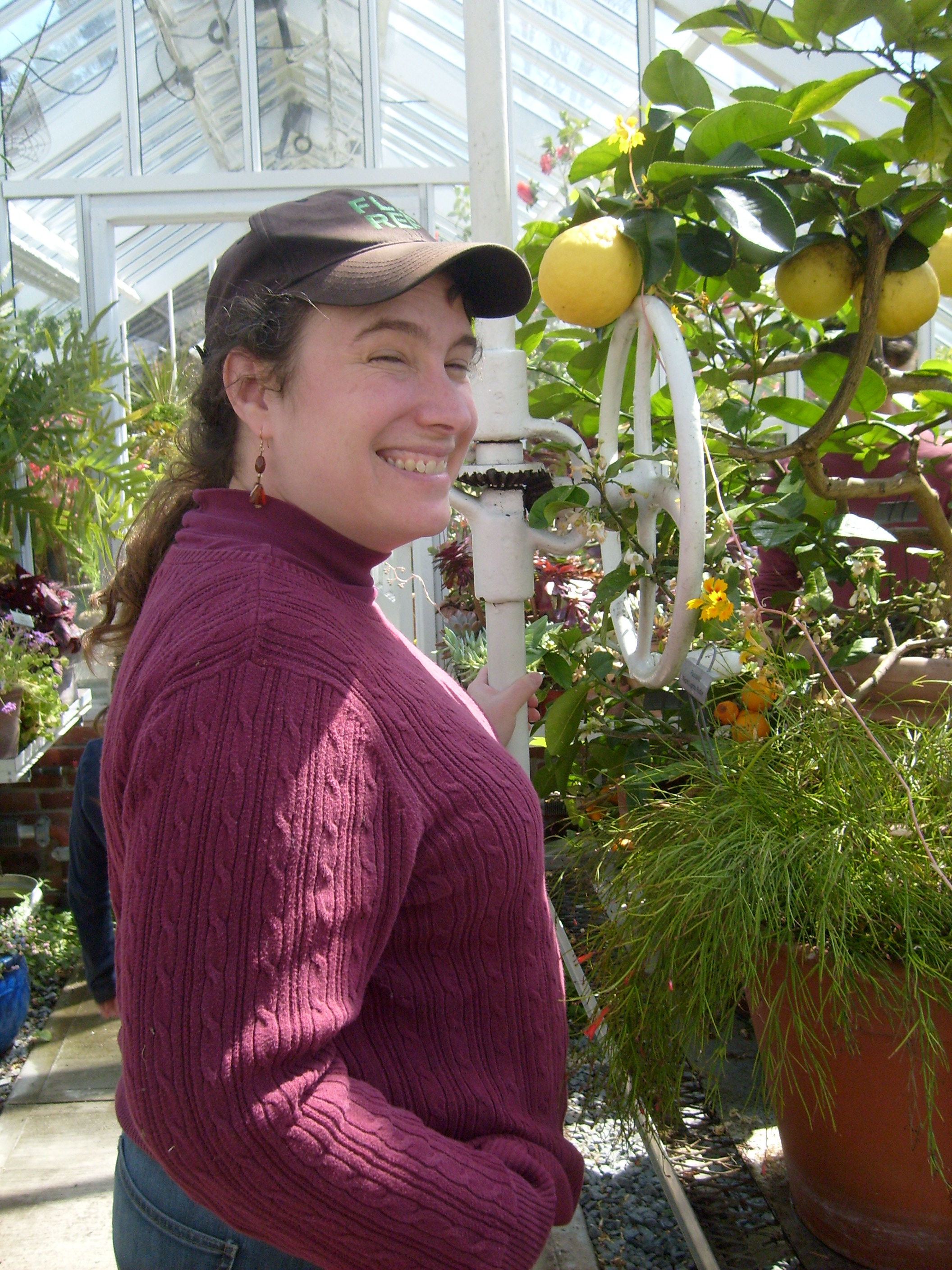 Me in the greenhouse at Blythwold by the American Wonder Lemons
