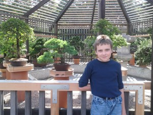 M in front of the bonsai at the Arnold Arboretum