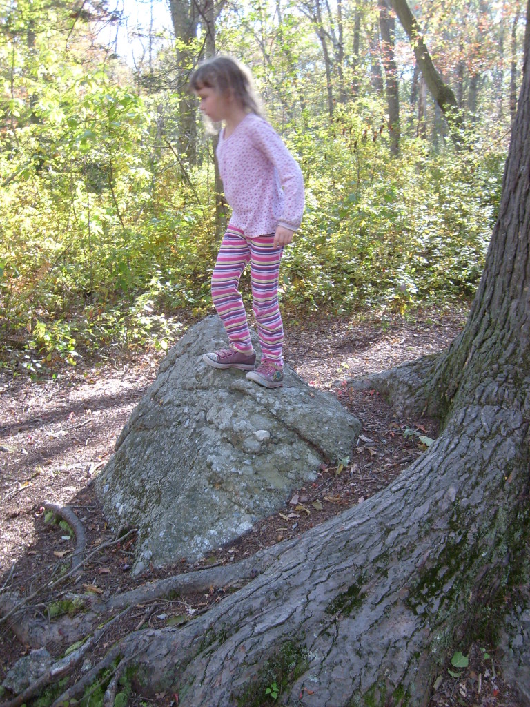closer view of K on the rock by the hemlock tree