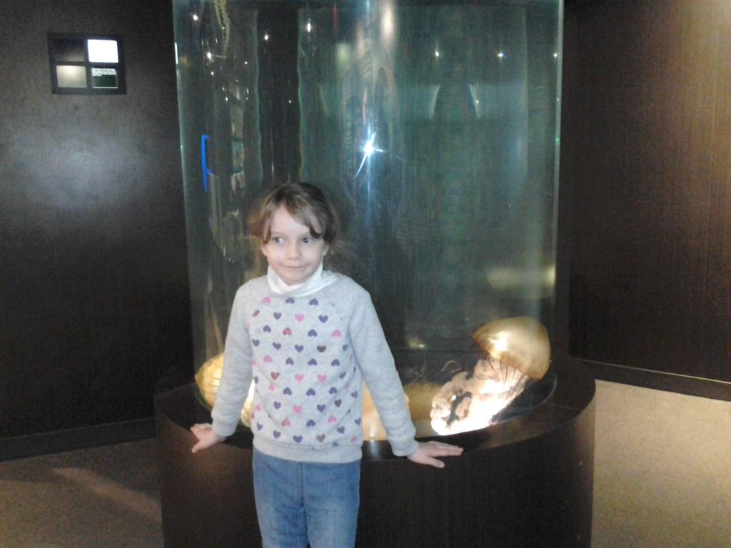 K infront of the jelly fish tank