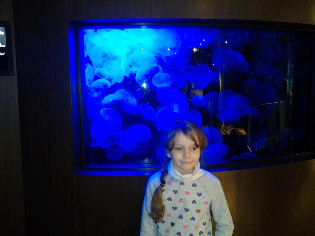 K in front of the blue jellyfish tank