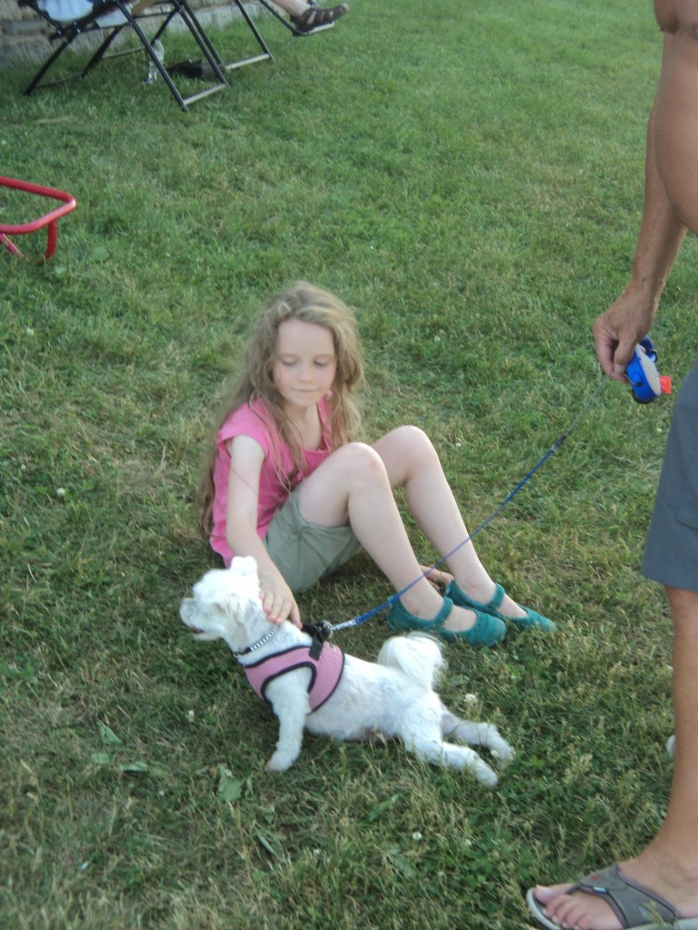 K playing with a lap dog, give her long enough and she will befriend every dog and child in a park.