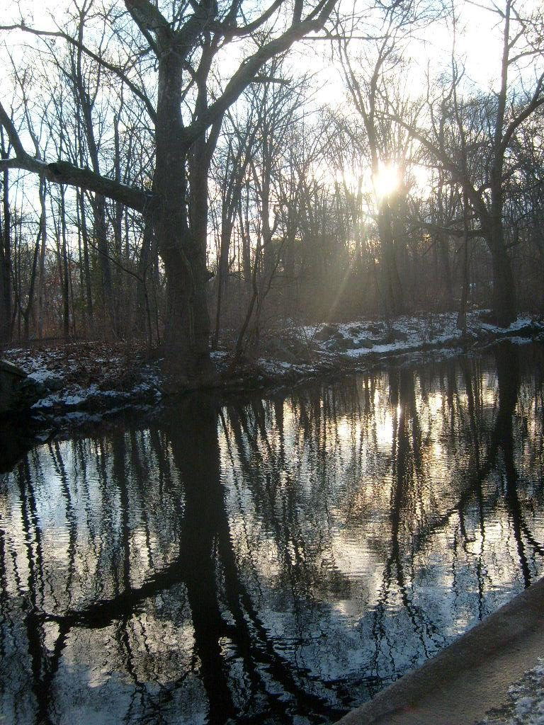 sun setting over mechanic's Pond outlet